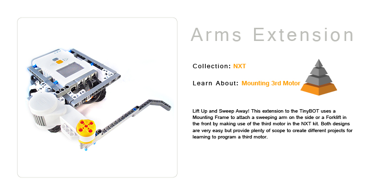 Arm Extensions TinyBOT
